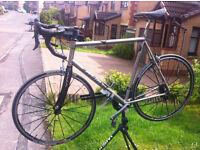 Van Nicholas Chinook Titanium Bike