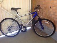 Optima Blue Bike
