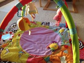 Baby gym, that is what they are called, but it seems to me it is a playmat.
