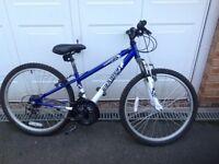 Apollo Gradient Child's Mountain Bike
