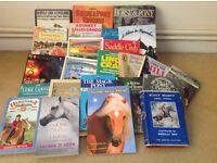 Big selection of pony books
