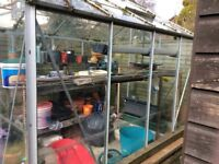 Greenhouse 6x8 with potting bench
