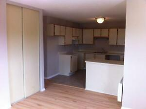APPARTEMENT A LOUER - APARTMENT FOR RENT - LIBRE - AVAILABLE Gatineau Ottawa / Gatineau Area image 1