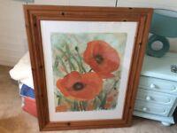 Poppy print in frame