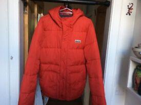 Men's XL Holister Winter jacket