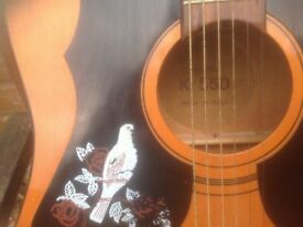 White Dove acoustic