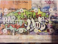 🎇 ↗️ GRAFFITI PHOTO MURAL WALL ART WALL COVER ↖️ 🎆
