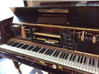 Looking for a good Pianola piano, grand or upright. Electric preferred would consider pedal one.