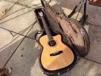 Auden Bowman electro acoustic