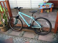 Men's/Boy's Apollo mountain bike