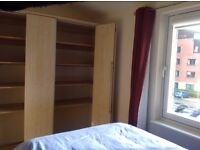 Double Room Available For Professional Male
