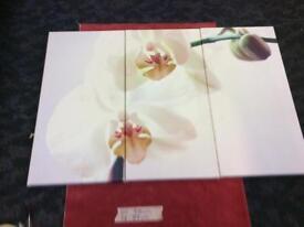 Floral split picture