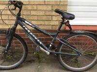 Ridgeback boys MX24 mountain bicycle for sale