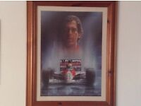 For Ayrton Senna fans.