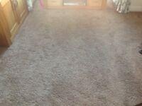 Top quality carpet