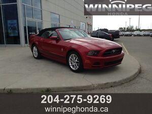 2013 Ford Mustang V6 Convertible. Local trade, Low Kilometres,