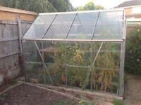 8x6 glass greenhouse, free