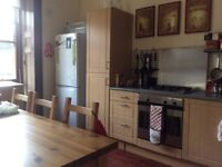 Lovely West End location - Room in large flat
