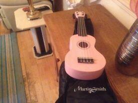 Guitar pink Martin smith