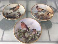 Davenport pottery ltd edition bird collectors plates x3
