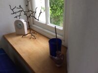 Bright en suite furnished double room with direct access to garden. in relaxed family house