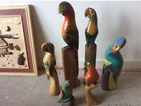 Large set of colourful parrots