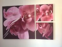 Large Next Flower Canvas