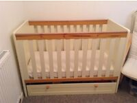 Two tone cot, good condition £40