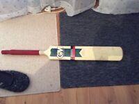 Gunn and Moore bat