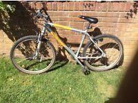 Adult Ridgeback Mountain Sports bike 24 gears