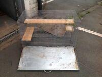 Chinchilla rat cage