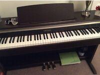 Casio electric piano beautiful condition. 52 white keys.