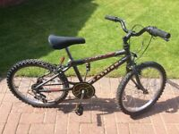 Raleigh Raptor childs bike