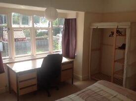 Lovely Double Room for Rent