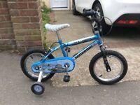 Boys Challenger Bike