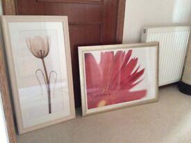 Various Framed Prints