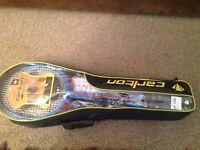 Carlton 4 player Badminton set