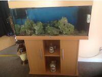 Juwel 180 fish tank, comes with lighting , pumps, rocks etc