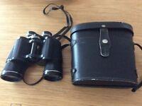 Vintage Prinzlux Binoculars