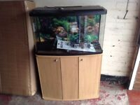 Fish Aquarium with cabinet and lots of extras.