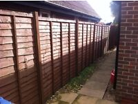 6 foot x 6 foot -Larch lap fence panels