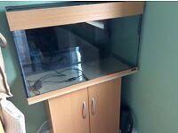 Juwel Rio 125 fish tank
