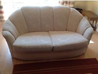 A pair of two seater Sofas