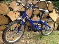 Giant MTX 125 Mountain Bike (5-8 year old)