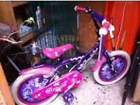 Girls 16 Inch Annabelle Bike