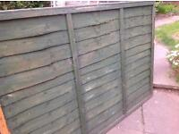 One fence panel 6x4ft
