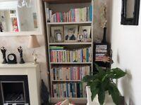 Tall Country Cream Five Shelf Bookcase.