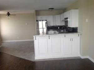 Kenwick Place - 2 Bedroom - Deluxe Apartment for Rent Sarnia Sarnia Area image 5
