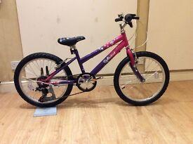 "Girls 20"" wheel bike brand new"