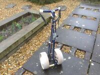 Golf Cart/Trolly